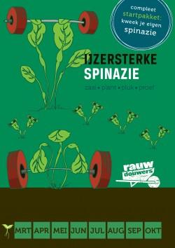 ZAAI-IN-Spinazie