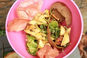 Zelf compost maken van groente en fruitresten.